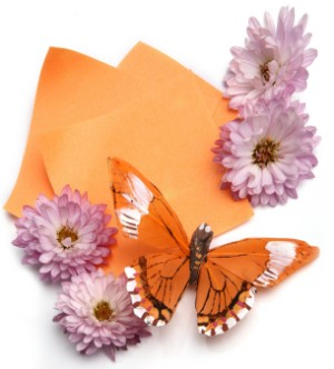 butterfly themed wedding stationery